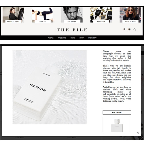 The File - Mr. Smith featured in the article 'How to do Brunette like a Boss' on <br /> the-file.com<br />
